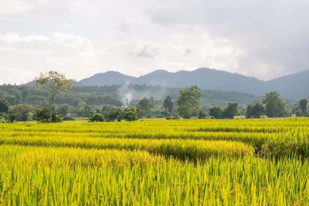 Pai1 - Thailand kosten: hoeveel kost een maand in Thailand?