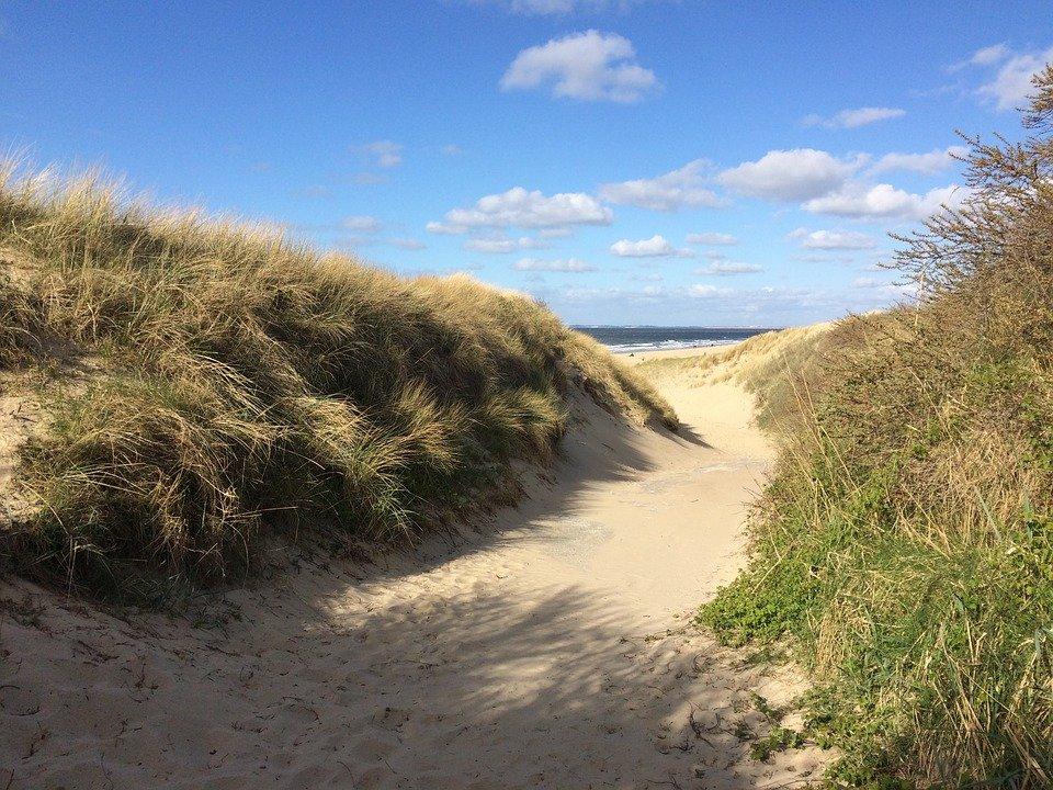 strand zeeland pixabay - De 21 mooiste stranden van Zeeland voor een dagje zonnen!
