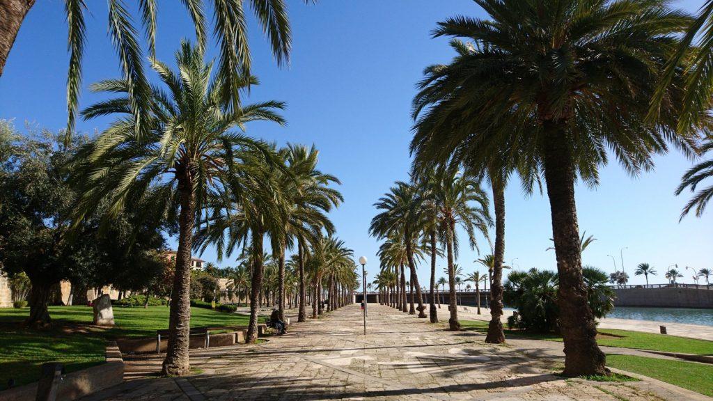 palma pixabay 1024x576 - Waar te verblijven op Mallorca: De mooiste plekken (+ hotel tips voor ieder budget)