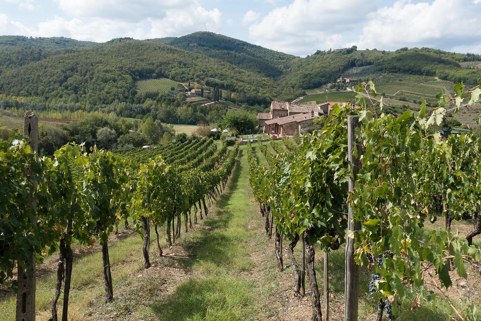 chianti pixabay - De 19 mooiste plekken in Toscane: een Italiaanse droomvakantie!
