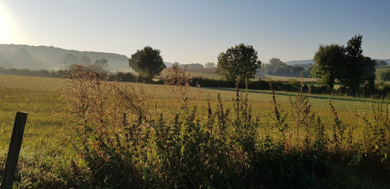 zlimburg pixabay - De 17 mooiste plekken in Limburg voor een dagje uit: natuur, steden en uitjes!
